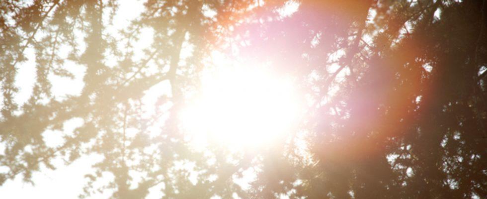 Bilan thermique: tout ce que vous devez savoir avant l'été