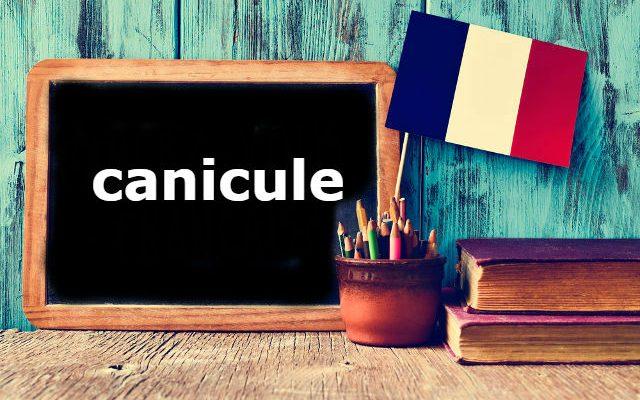 """Mot français du jour: """"Canicule"""""""